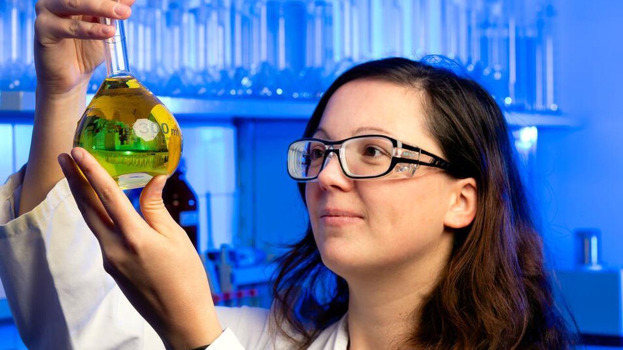 Radeberger Start-up forscht an Anti-Krebsmittel
