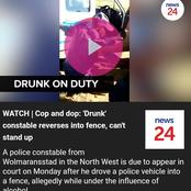 WATCH   Cop and dop: 'Drunk' constable reverses into fence, can't stand up