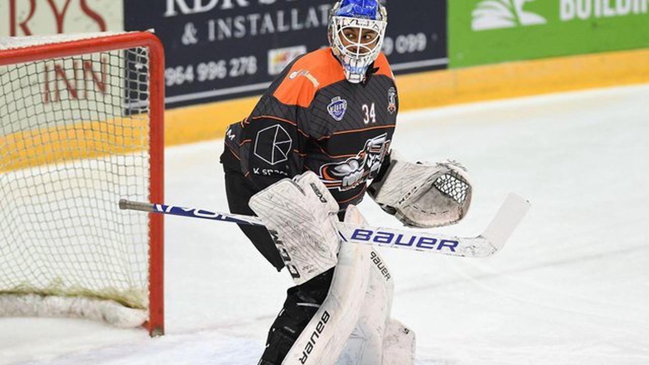 Teenage goalie Curtis Warburton stakes claim for Sheffield Steelers' place
