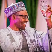 Buhari should be praised for what he plans to do for minimum wage earners