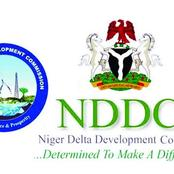 NDDC: We Shall Demonstrate If The Board Is Not Inaugurated - Akwa Ibom Patriot