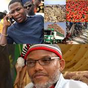 Analysis on How Sunday Igboho and Mazi Nnamdi Kanu have caused Nigeria's unity a big problem