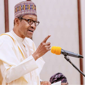 President Buhari warns State Governors who reward bandits with money for abductees