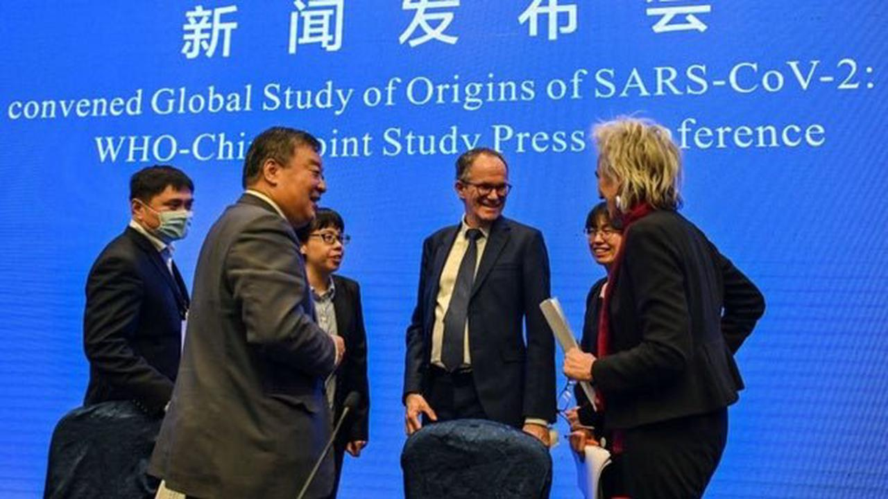 China rejects WHO plan for further study into COVID-19 origins