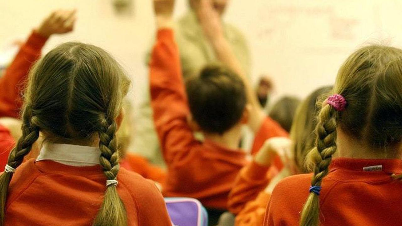 Scientific advice cell to update ministers on Covid and schools