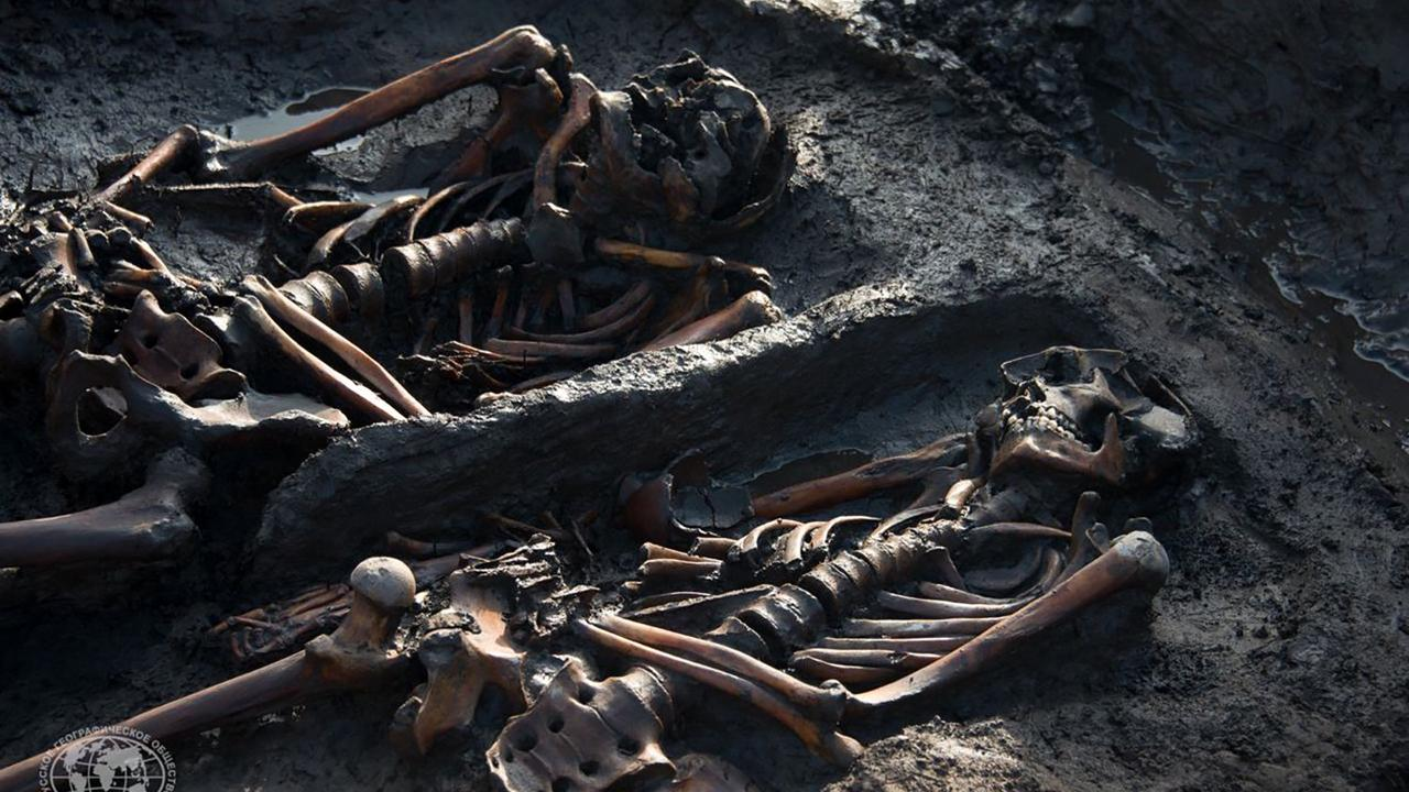 Russian scientists want to clone 3,000-year-old Siberian warriors and horses