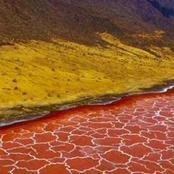 بالصور| البحيرة القاتلة في أفريقيا.. تحول كل من يلمسها إلى حجر