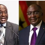 2024 NPP Presidential Race : Bawumia And Alan Camps Must Cease Fire Before It's Too Late