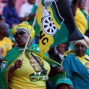 'It's time for South Africans to make peace with their hearts and let this party die in peace.'