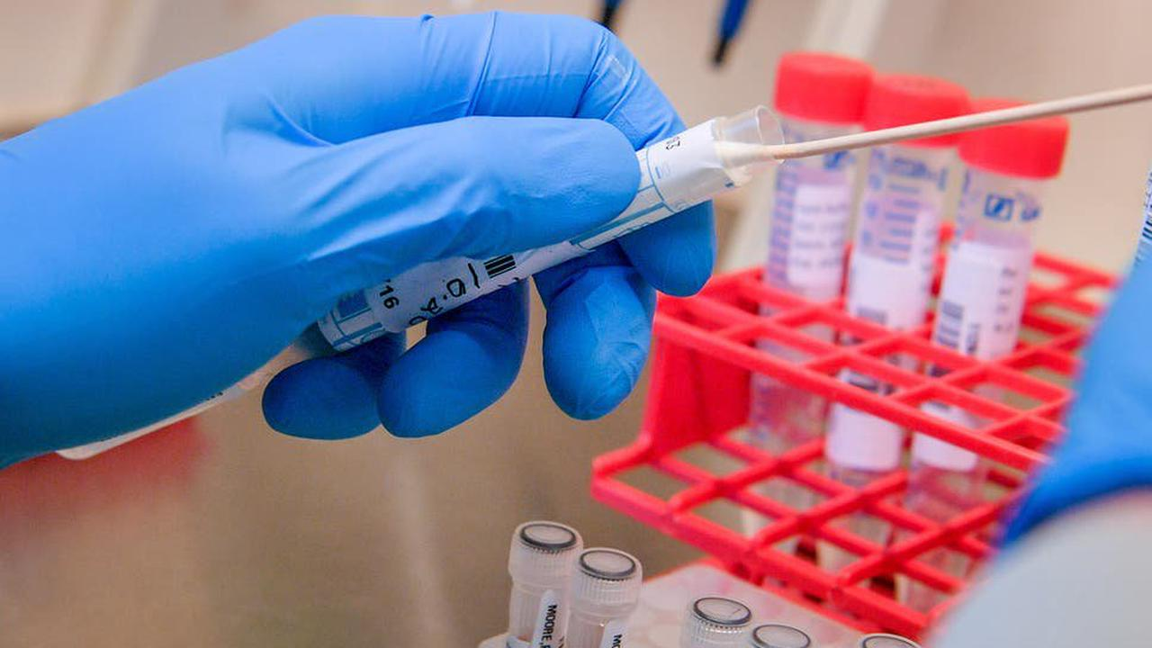 Testing surge after dozens contract South African virus variant in south London