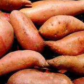 البطاطا تقوي جهاز المناعه وتقي من السرطان ..تعرف علي فوائدها المذهله