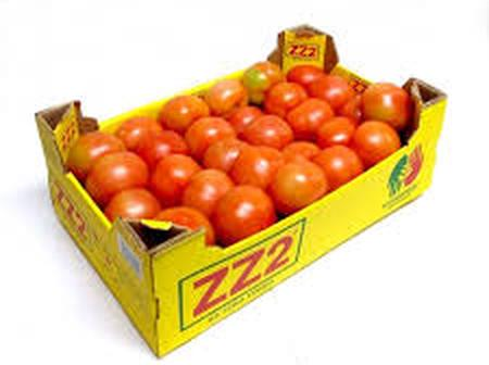 Massive Shortage of Tomatoes and Carrots See Prices Increasing by 50%