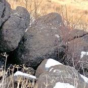 هل يمكنك اكتشاف أسد الجبل القاتل الذى يختبئ بين هذه الصخور وهو مستعد لنصب كمين لفريسته؟