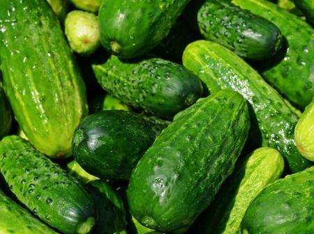 Things to know about eating cucumbers around evening time.