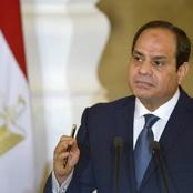 الرئيس السيسي «راهن» بشدة وحزم والمصريون نجحوا في التنفيذ بامتياز وصدمة شديدة لأعداء الدولة «رأي»