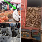 An Open Letter to Northern Traders Concerning The Blockage of Food Supply to The South