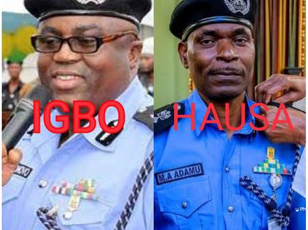 Quick Facts About The Past IGPs In Nigeria, Their States and Tribes