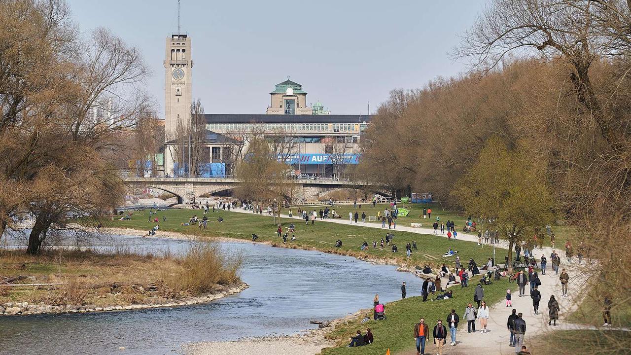 Mit pferden sex Zoophilie Sex
