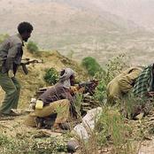 «البلطجة الإثيوبية مستمرة» ..تصفية سودانيين على الحدود بطريقة بشعة وسرقة أعداد كبيرة من المواشي