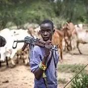 Herdsmen crisis: Fulani herdsmen remove finger, shatter woman's jaw in Ogun