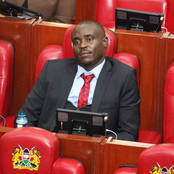 Murkomen Reveals the Controversial Reason Behind Sen. Malala's Call on DP Ruto to Declare BBI Stand