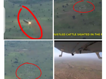 Nigeria Air Force Guns Down Armed Bandits Who Stole Cattle From Villages In Kaduna (Video)