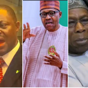Fani-Kayode Blows Hot, See What He Reveals About Obasanjo and What He Told Buhari Over Insecurity