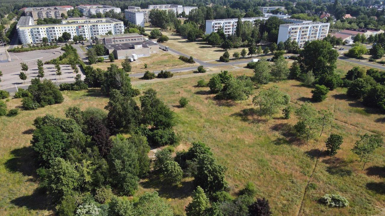 Wohnen und Bauen in Cottbus Bauboom wegen Strukturwandel – Welche Cottbuser Stadtteile wachsen werden