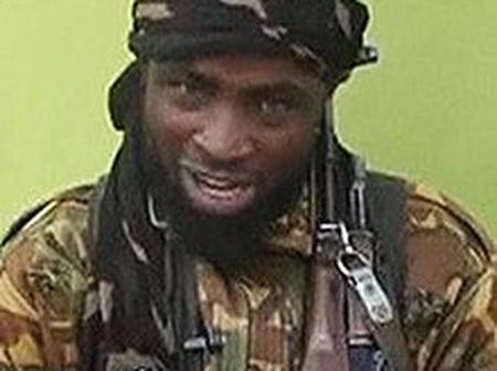 After the recent bombardment of the Sambisa forest, see what is said to have happened to Shekau