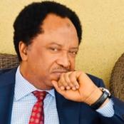 People react to Shehu Sani's comment hours after the massacre of over 40 farmers in Borno.