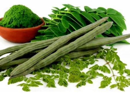 Nutritional value of Moringa leaves
