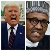2 Advises President Donald Trump Should Give To President Buhari Immediately.