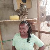 Reactions After A Lady Posted A Photo With An Owl On Her Head As A Pet