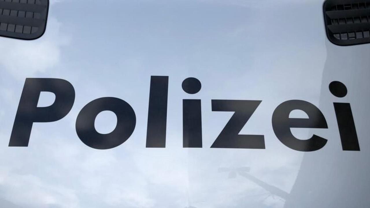 Willisau LU: 60 Wegweisungen bei unbewilligter Kundgebung ausgesprochen