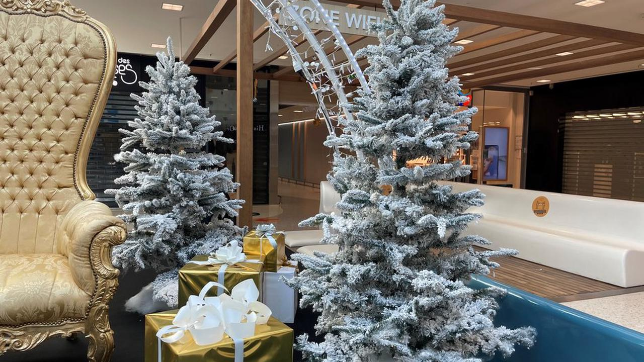 NICE : Donnez une 2ème vie aux sapins de Noël !