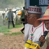 We won't Obey South-West Governor's Ban On Open Grazing - Miyetti Allah Says, Gives Reasons