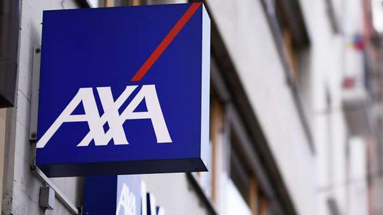 Axa Schweiz will ins Geschäft mit Tierversicherungen einsteigen