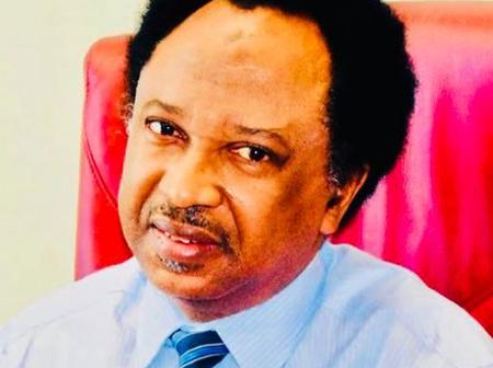 See What Shehu Sani Said About Bandits Collecting Fees From Farmers
