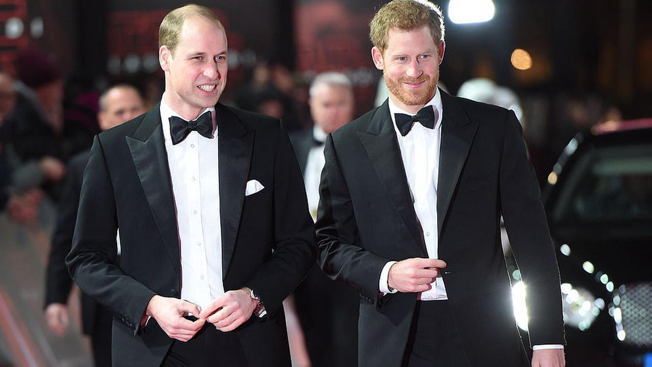 Princes William and Harry will 'stand shoulder to shoulder' and walk together behind Philip's coffin as royal experts say it could heal 'deep damage'