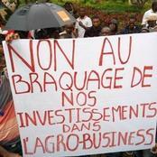 Agrobusiness : un procès annoncé demain 28 Janvier au Plateau