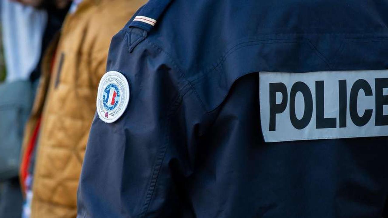 Pau: les policiers sauvent un chien dans un lave-linge en fonction