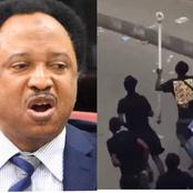 After Thugs Cart Away Oba Of Lagos Staff And Shoe, See What Sen Shehu Sanni Advised Them To Do To It