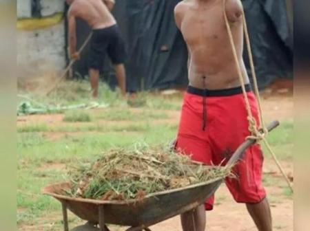 Be Grateful To God, See Photos Of Physically Challenged People Working.