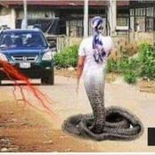 Fiction:This Mermaid was caught red handed on the streets of jozi See what happened to her