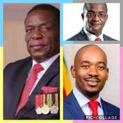 'All Zimbabweans must vote for Mnangagwa because Nelson Chamisa is clueless' - OPINION