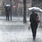 الارصاد.. أمطار وشبورة ورياح بدءً مناليوم وحتى الخميس