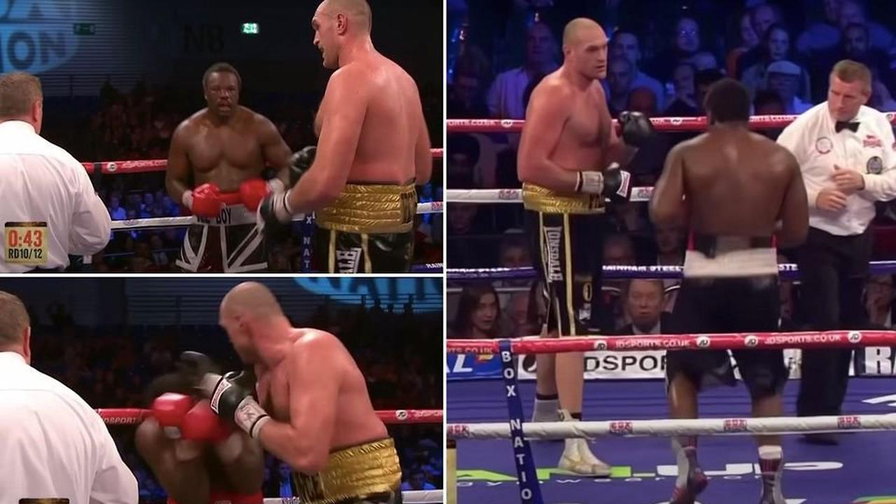 Tyson Fury vs Deontay Wilder 3: When Gypsy King 'pleaded with ref' to stop Chisora fight