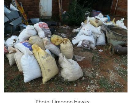 Cops jumps on Zama Zamas in Limpopo.
