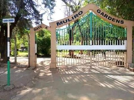 Transformation And Current View Of Muliro Garden in Kakamega County(Photos)