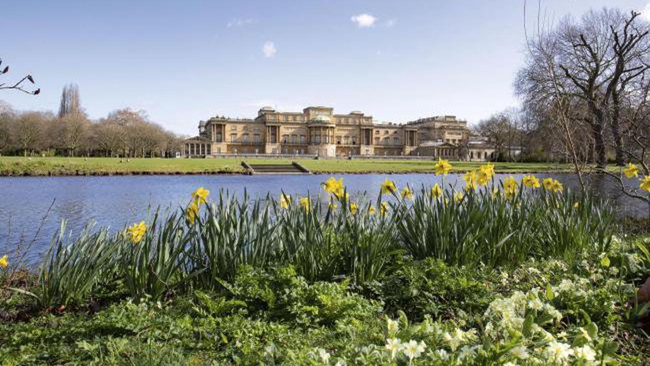 Huge public interest in Buckingham Palace garden tour tickets